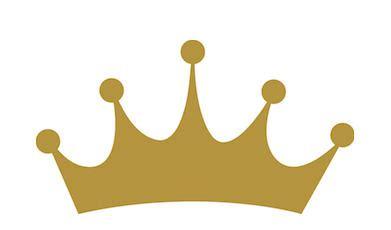 Essay on the bird crown point